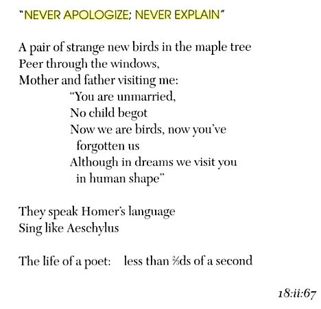 never aoligise